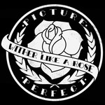 Picture Perfect - Wither Like A Rose