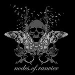 Nodes Of Ranvier - Skull Flight